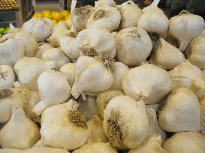 Health Benefits: Garlic